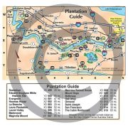 New Orleans area plantation guide from the New Orleans Illustrated Map
